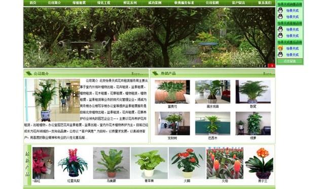 """花卉网站""""花非花""""网络营销推广方案"""