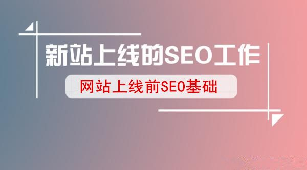 seo数据分析如何让网站快速收录